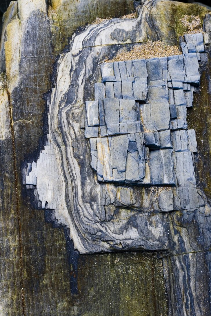Loreen Hinz, Eco Sex 2, 100x70 cm, 2012, echter Fotoabzug auf Aludibond