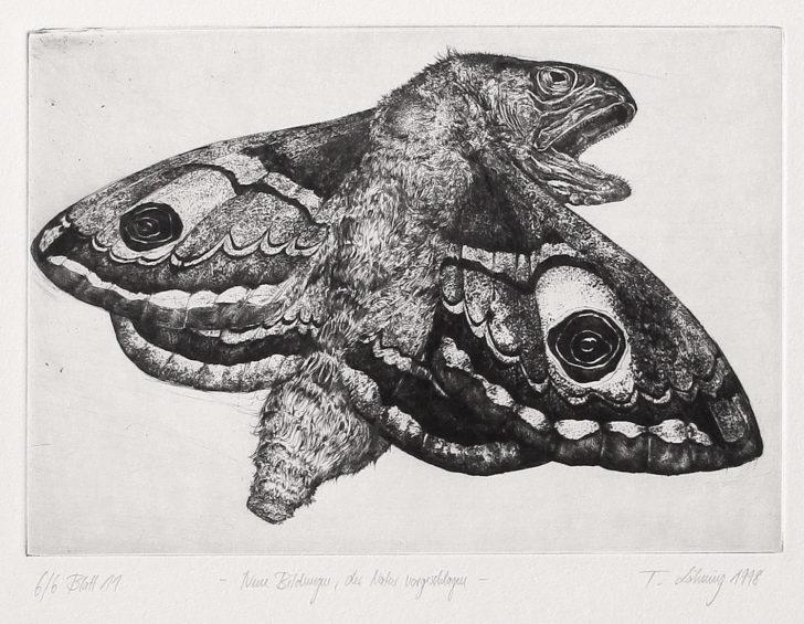 Thomas Löhning, Neue Bildungen der Natur vorgeschlagen, 22x15,2 cm, 1998, Radierung