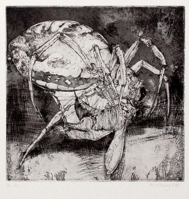 Thomas Löhning, Spinne und Grashüpfer, 20x19,7 cm, 1995, Radierung