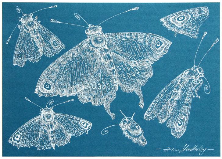Thomas Löhning, Zum Schmetterling, 21x29,7 cm, Tusche