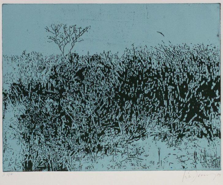 Luise Dewerny, In den Dünen, 50x60 cm, 2014, zweifarbiger Holzschnitt