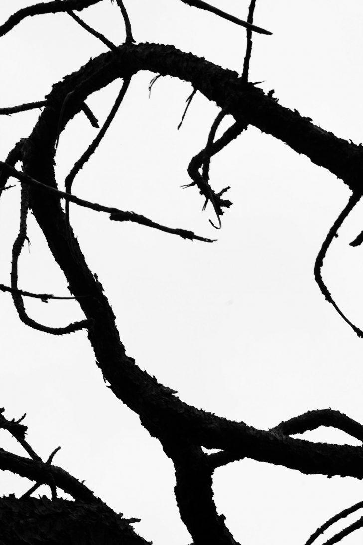 Loreen Hinz, Lines 1, 50x75 cm, 2012, Direktdruck Aludibond