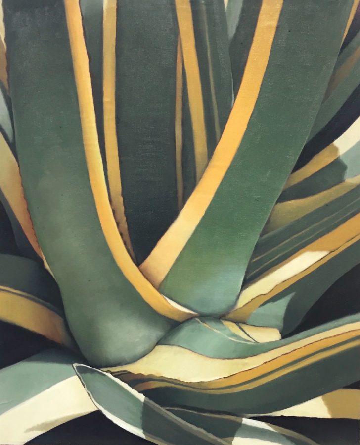 Michael Klipphahn, Agave, 30x24 cm, 2016, Öl auf Holz
