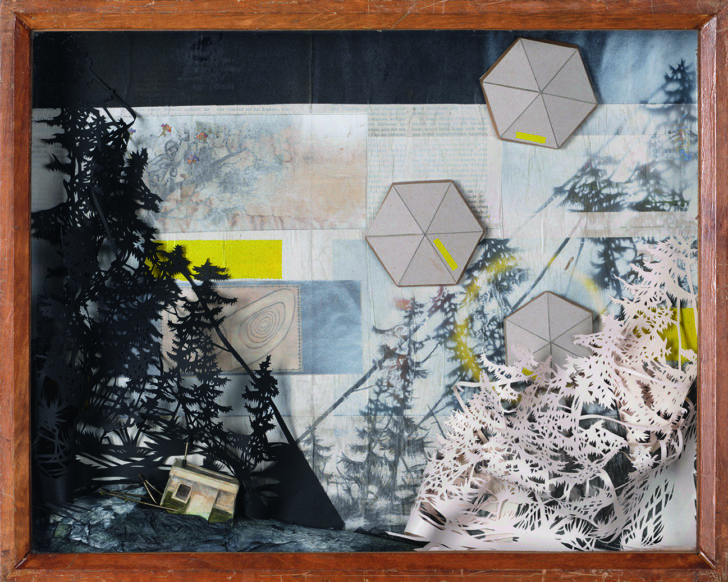 Katharina Meister, About the bees and the birds, 40x51x6 cm, 2016, Papierschnitt, Mischtechnik in Vitrine