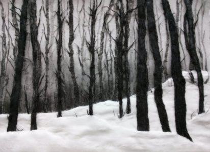 Jinran Kim, Winterlandschaft 2, 50x70 cm, 2018, Gaze, Papier, Asche
